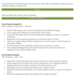 Social Media Strategist Resume Sample 2