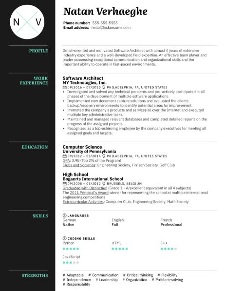 Software Architect Resume Sample 2