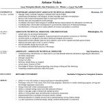 Technical Designer Resume Sample 5