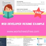 Web Developer Resume Example
