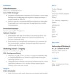 Web Developer Resume Sample 5