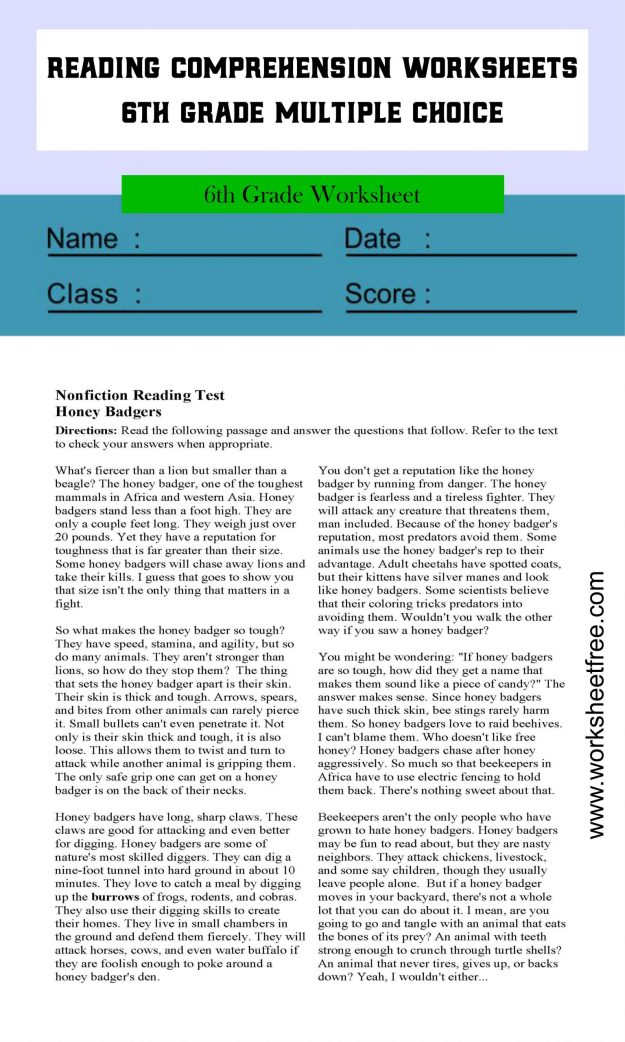 reading comprehension worksheets 6th grade multiple choice 1