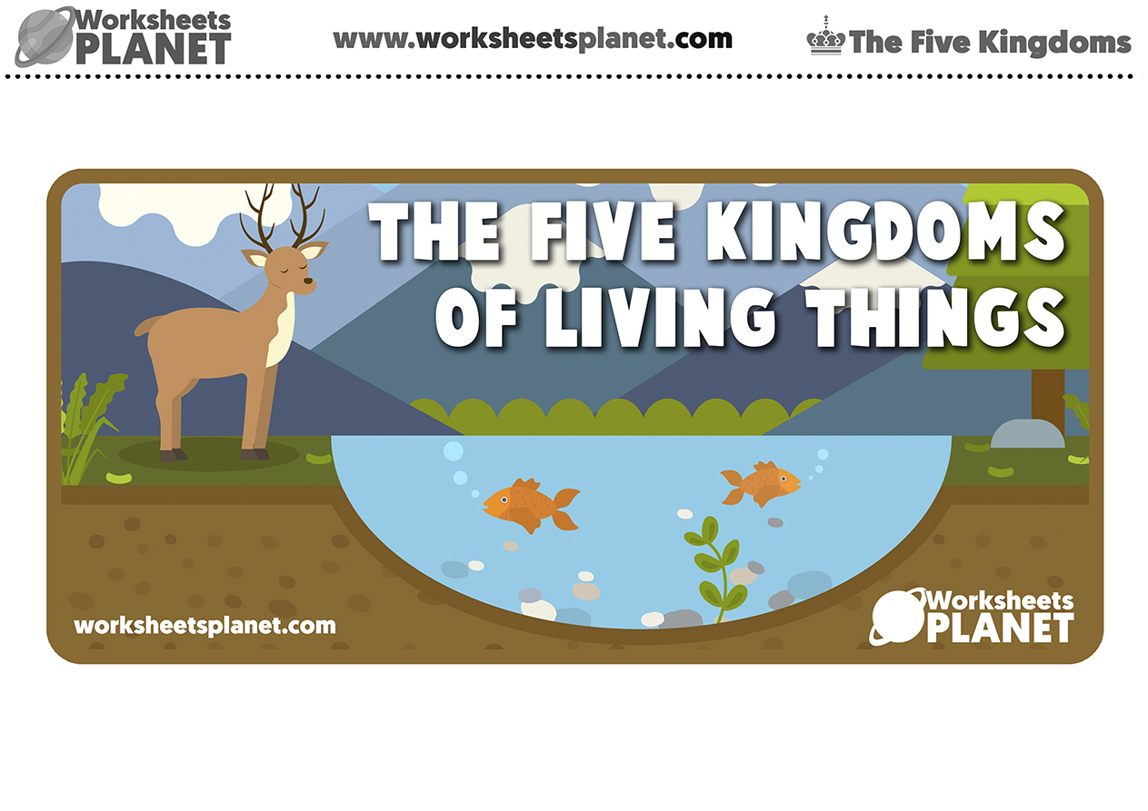 The Five Kingdoms Of Living Things For Kids