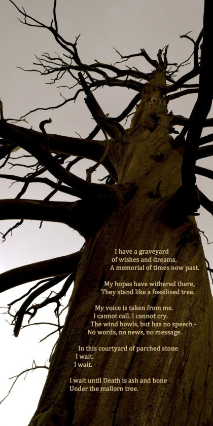 Large dead tree with poem at dusk