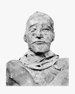 Ramses_III_mummy_head (1)