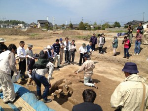 Excavations at the Sakuraba IV site, Hirono-cho Fukushima Prefecture, in advance of building new homes for people displaced by the 2011 disaster, revealed traces of 8th-century buildings.