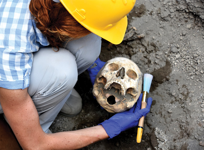 new finds from pompeii world archaeology