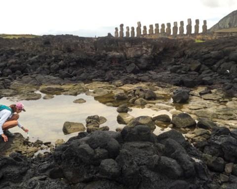 Tanya Brosnnan studies a coastal freshwater seep behind moai