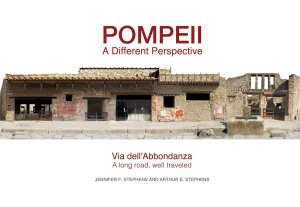 pompeii a different perspective cover