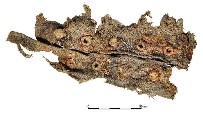Lacing eyelets from the ankle of breeches. [Image: Oxford Archaeology]