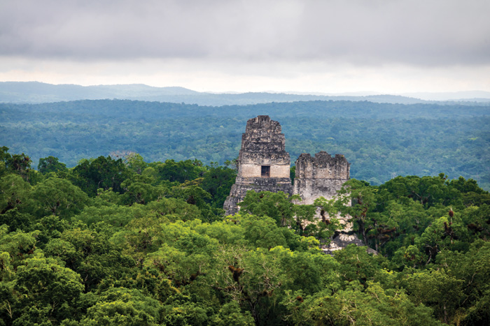 Two Maya pyramids rise above the jungle canopy at Tikal