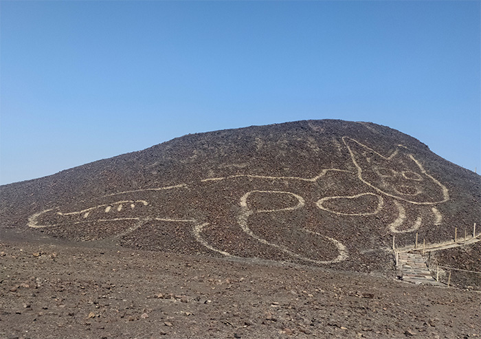 A large cat-shaped geoglyph on a rocky hillside