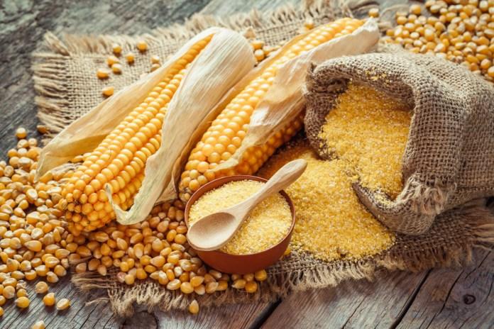 Kenya facing maize shortage crisis | 2019-06-05 | World Grain
