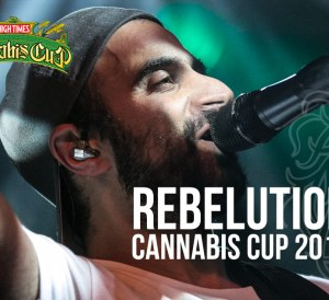 Rebelution Cannabis Cup