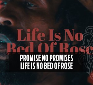 Promise No Promises - Life Is No Bed Of Roses