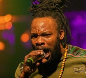 Bushman at P60 2019