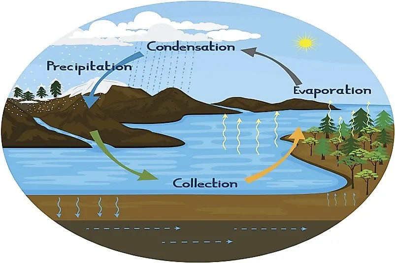 What Is The Water Hydrologic Cycle
