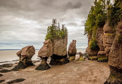 What and Where Are The Hopewell Rocks? - WorldAtlas