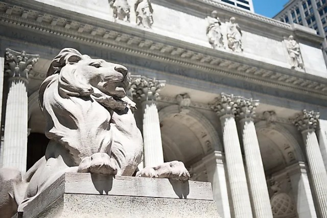 #7 The Library Lions - 1911