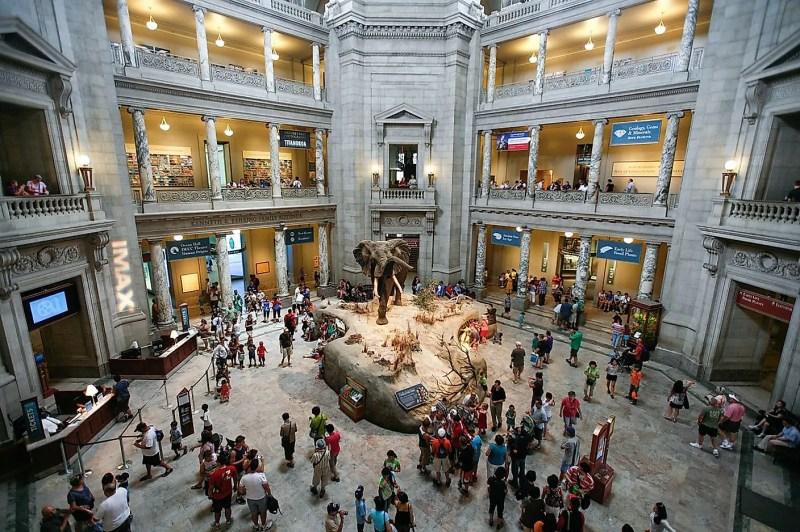 Smithsonian Enstitüsü Ulusal Doğa Tarihi Müzesi.  Görsel hakları: Alex Proimos, Sidney, Avustralya / Wikimedia.org
