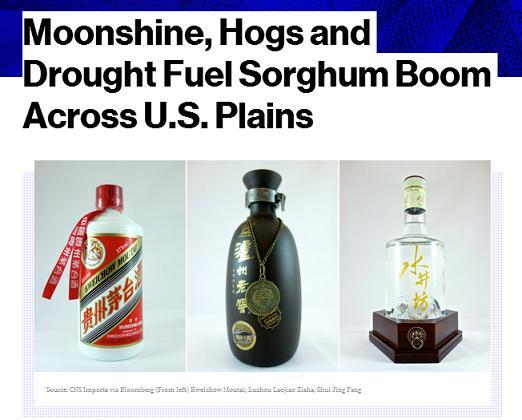 baijiu news bloomberg united states sorghum exports to china