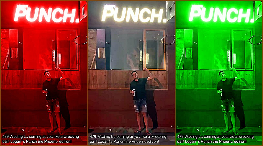 world-baijiu-day-2019-Shanghai-Logans-Punch-collage
