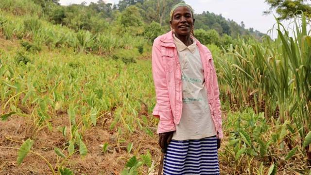 Ethiopian farmer Tadelech Kebede benefited from World Bank's Sustainable Land Management Program (SLMP) that helped turn her land around. Now she grows arabica coffee, vegetables and flowering indigenous plants. Photo: © Kaia Rose/Connect4Climate/World Bank.