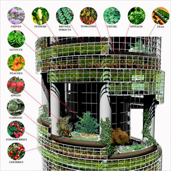 vegetable tower