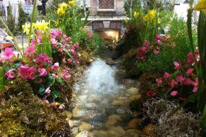 beautiful Home & Garden