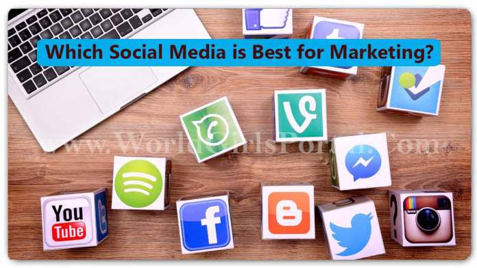 Facebook, Instagram, Twitter, TikTok, YouTube, Google : Which Social Media is Best for Marketing?
