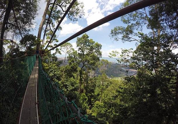Hutan Simpan Bukit Gemok