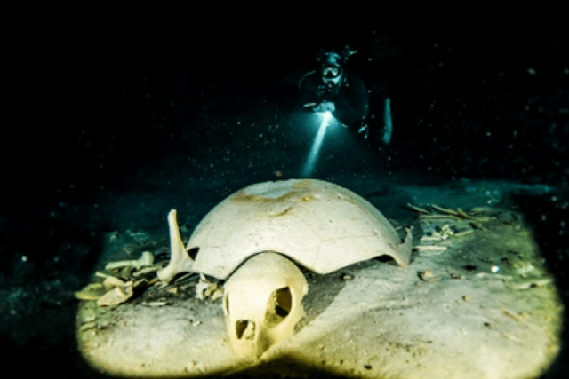 We pay our respects to the fallen of Turtle Cavern (Source: http://www.sipadanscuba.com/turtletomb.htm)