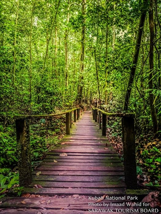 Sarawak-Kuching-Kubah-National-Park