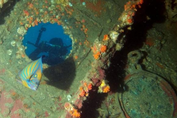 sarawak borneo playground kuching wreck diving