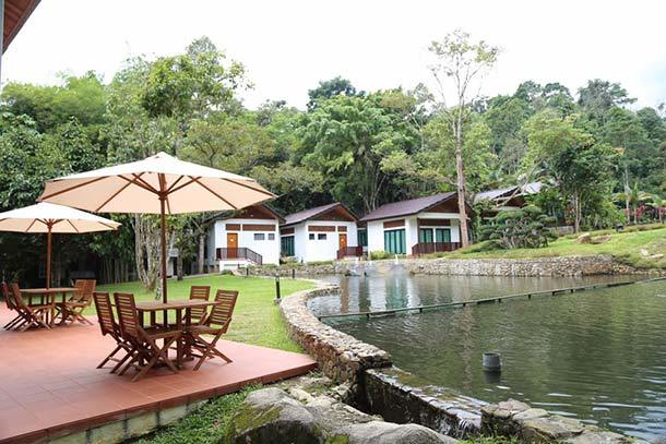 Bidaisari Resort Janda Baik - Main Image