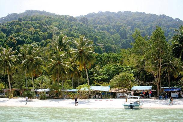 Teluk Duyung Penang Image