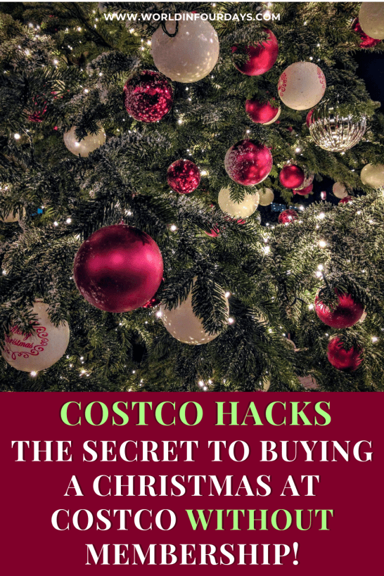 Costco Christmas Trees 2020 Does Costco Sell Christmas Trees? Here's Everything You Need To Know