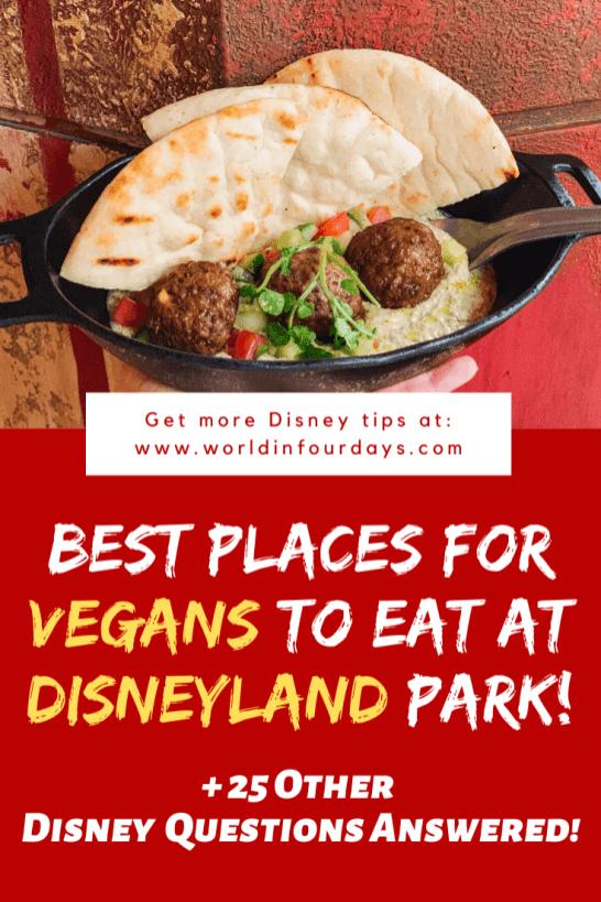 Can You Bring Food Into Disneyland | Vegan Disneyland
