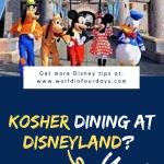 Can You Bring Food Into Disneyland | Kosher Dining Disneyland
