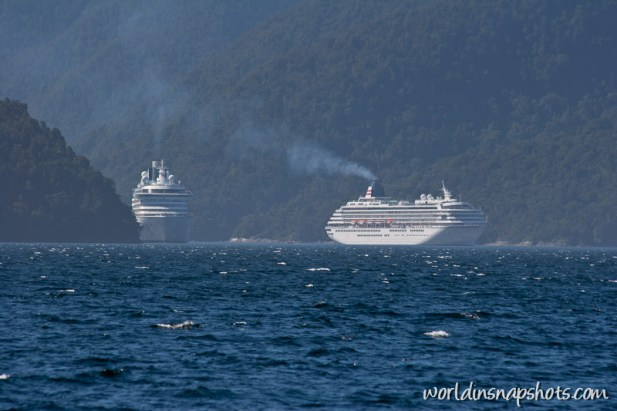 Cruise ships at Doubtful Sound