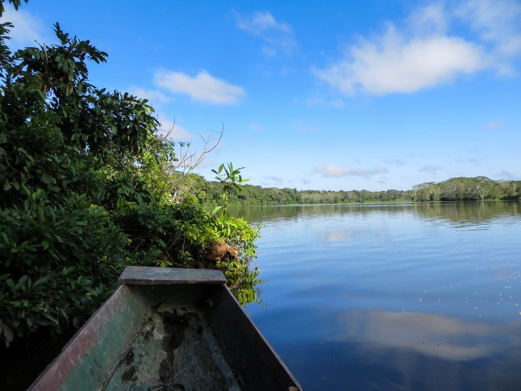 Travel by boat through the Amazon Jungle: a truly unique thing to do in Bolivia.