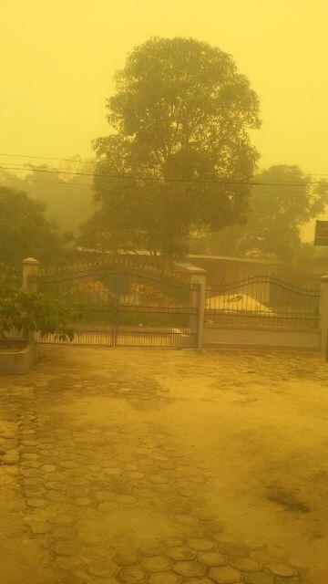 The Haze in Indonesia