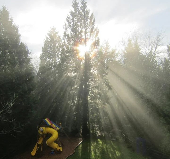 WASHINGTON, USA: Finding Home