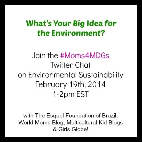 #Moms4MDGs MDG #7 With Esquel Foundation in Brazil