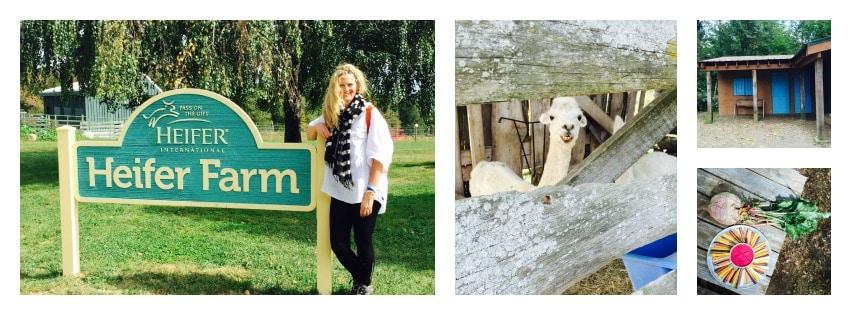 SOCIAL GOOD: A Hidden Gem, Heifer International's Heifer Farm