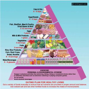 Are absolutely Food pyramid for adult