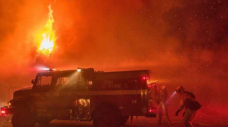 Al menos 13 gatos muertos en un devastador incendio en un refugio de animales