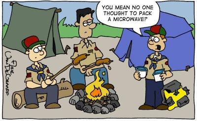 cub microwave