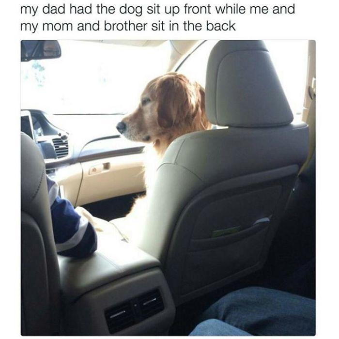 Dog Chest Slap While Cruising For Coyotes Youtube