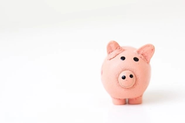 Very Basic Info About Taxes For Self-Employed People - Pink Pig Piggy Bank